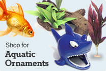 Aquatic Ornaments
