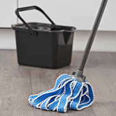 link to category Cleaning Accessories