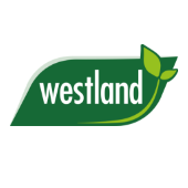 link to category Westland
