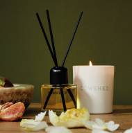 link to category Candles & Diffusers