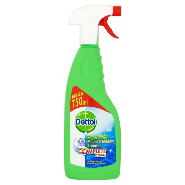 Dettol Mould Amp Mildew Remover Spray 750ml British Shop