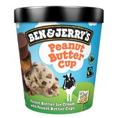 Ben & Jerry's Peanut Butter Cup Ice Cream