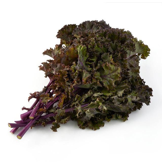 Kale Seeds - Organic & Heirloom Varieties   Johnny's Selected Seeds