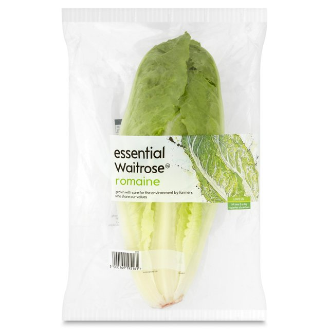 Romaine Heart Lettuce essential British Waitrose