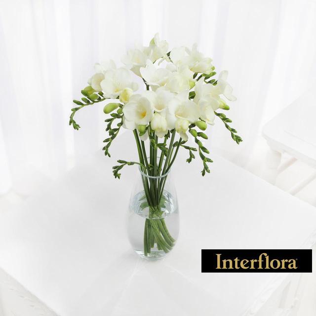 Interflora white freesia from ocado interflora white freesia mightylinksfo