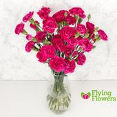 Flying Flowers Spray Carnations