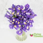 Flying Flowers Blue Iris