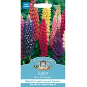 Mr Fothergills Seeds - Lupin Russell Mixed