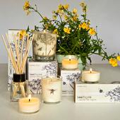Beefayre Honey Lily Scented Reed Diffuser