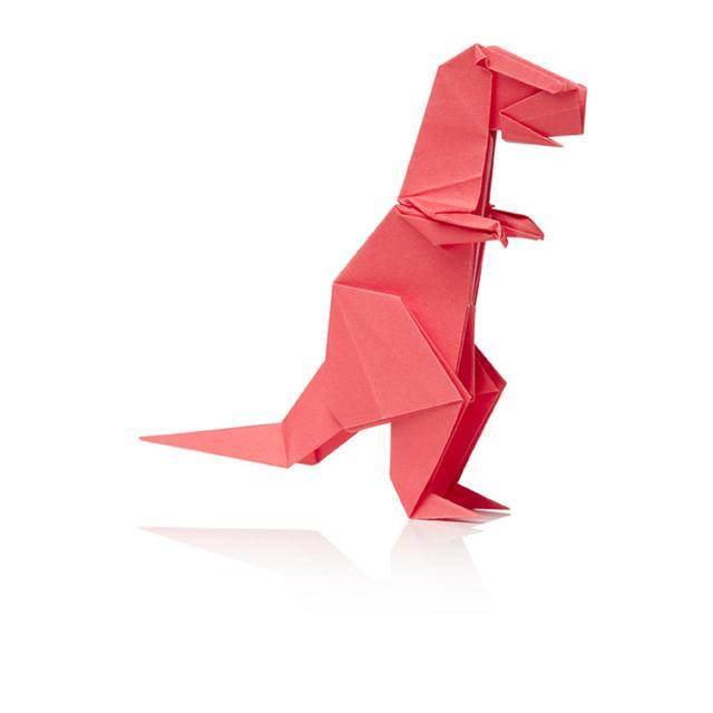 Dinosaur Origami 3yrs From Ocado