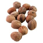 Natoora Walnuts in the Shell