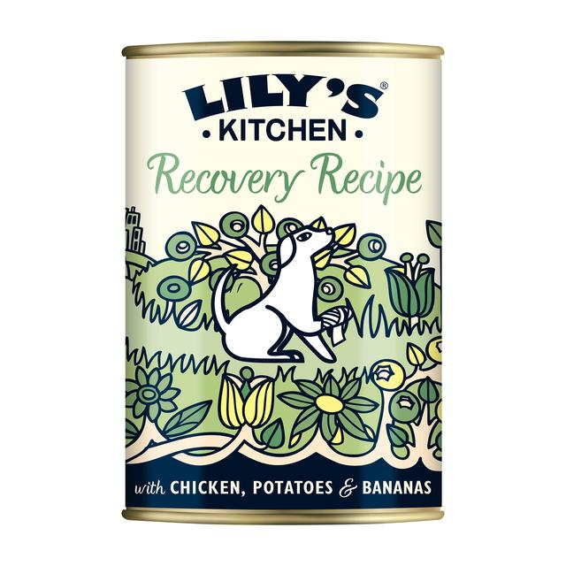 Lily\'s Kitchen Recipe Recovery Recipe for Dogs 400g from Ocado