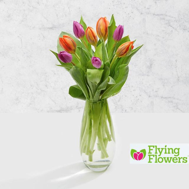 Flying Flowers Bright Tulips