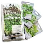 Microgreens Basil, Coriander & Rocket Growing Kit