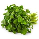 Natoora British Watercress