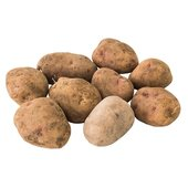 Natoora Yukon Gold Potatoes