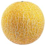 Wholegood Organic Galia Melon
