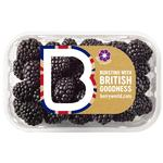 BerryWorld Blackberries