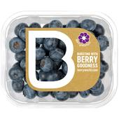 BerryWorld British Blueberries