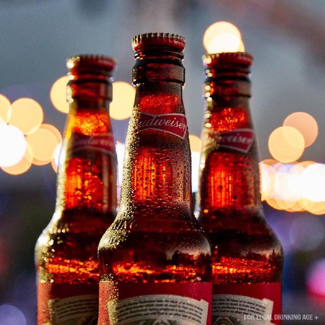 Budweiser Beer | Ocado
