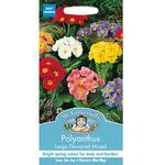Mr Fothergills Polyanthus Large Flowered Mixed Seeds