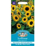 Mr Fothergills Sunflower Little Dorrit F1 Seeds