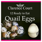 Clarence Court Quail Eggs Ready to Eat