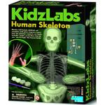 Kidz Labs Human Skeleton, 8yrs+