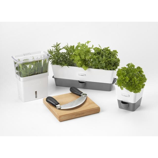 Cole Mason Self Wateringtriple Potted Herb Keeper