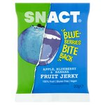 Snact Apple, Banana & Blueberry Fruit Jerky