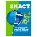 Snact. Apple, Banana & Blueberry Fruit Jerky Multipack