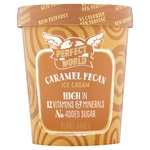 Perfect World Caramel Pecan Low Calorie Ice Cream