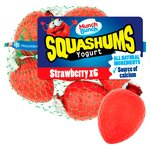 Munch Bunch Strawberry Squashums