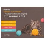 Waitrose Senior Cat Food Variety Selection in Jelly