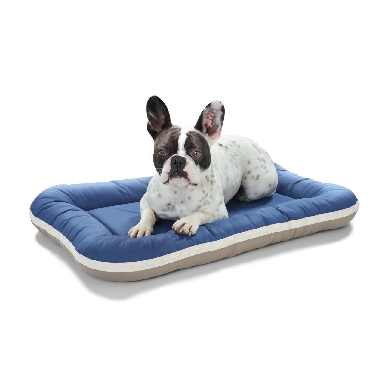 An image of Hunter Dog Cushion Milo Mid Blue/Taupe