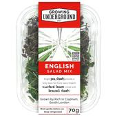 Growing Underground English Micro Herbs Mix