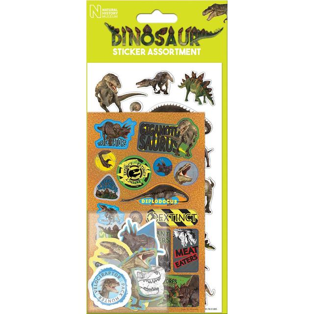Assorted dinosaur stickers 3yrs