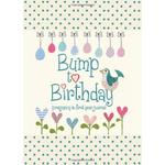 Bump to Birthday, Pregnancy & First Year Memory Journal Book