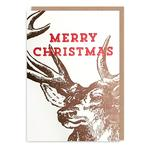 Highland Stag Mini Christmas Cards by 1973