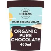 Coconuts Naturally Raw Chocolate Organic Dairy-Free Ice Cream