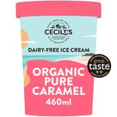 Coconuts Naturally Coconut Caramel Organic Dairy-Free Ice Cream