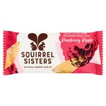 Squirrel Sisters Raspberry Ripple