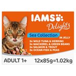 Iams Delights Cat Food Sea Collection In Jelly Multibox