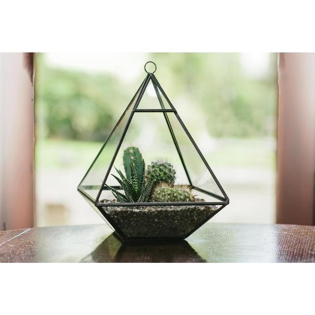 Plantpak Glass Pyramid Terrarium From Ocado