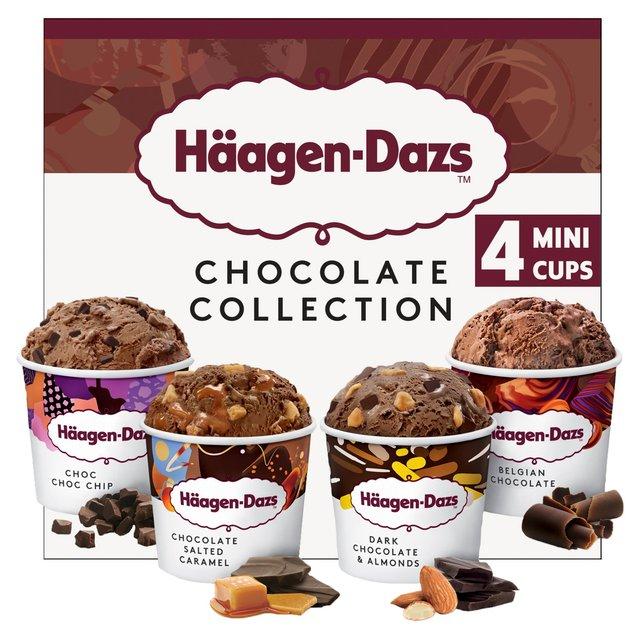 Haagen Daz Ice Cream Salted Caramel Chocolate