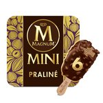 Magnum Mini Chocolate & Hazelnut Praline Ice Cream