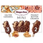 Haagen Dazs Salted Caramel & Peanut Butter Crunch Mini Ice Cream Bars