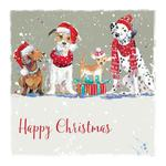 Festive Fun Deluxe Boxed Cards