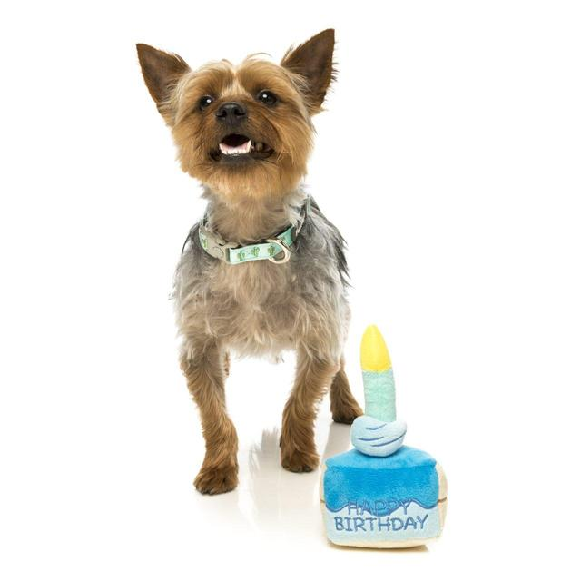 Fuzzyard Birthday Cake Plush Dog Toy Blue From Ocado