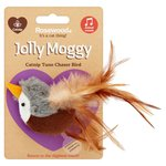 Jolly Moggy Catnip Tune Chaser Bird Cat Toy